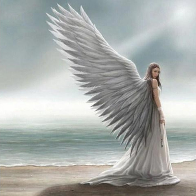 Angel with Beautiful Wing...