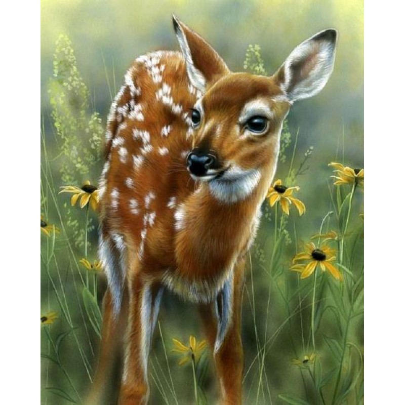 Adorable Baby Deer -...