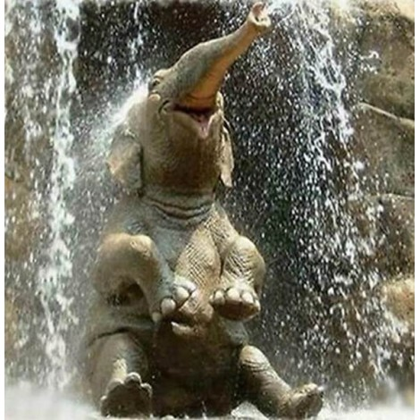 Elephant Baby Playing in Water