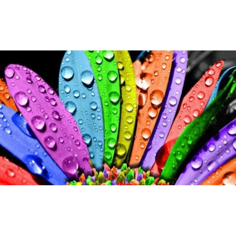 Water Drops on Color...