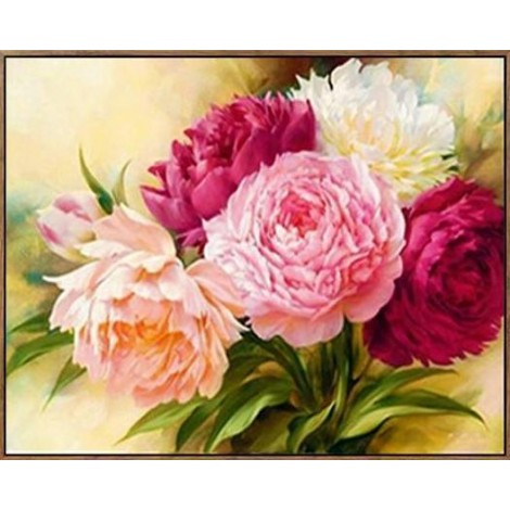 Colorful Peony Flower