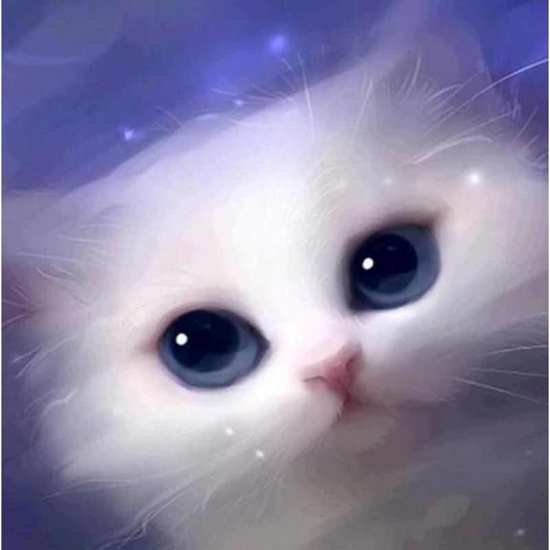 Cute White Cat with ...