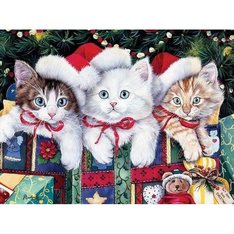Cats on Christmas