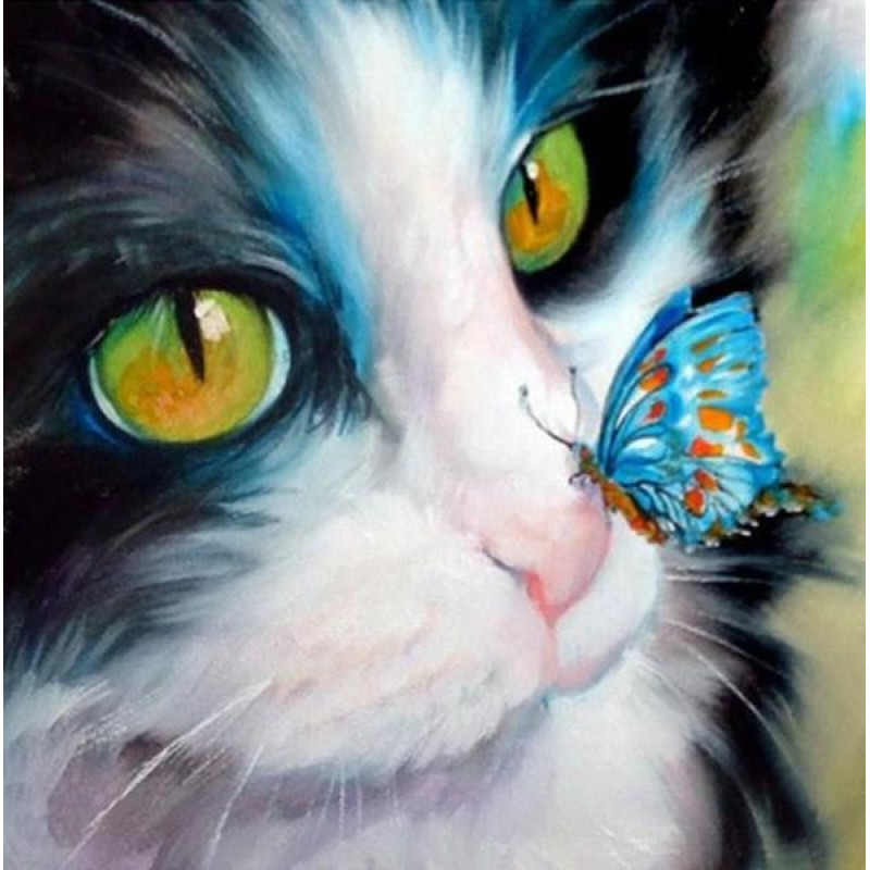 Cat with Butterfly o...