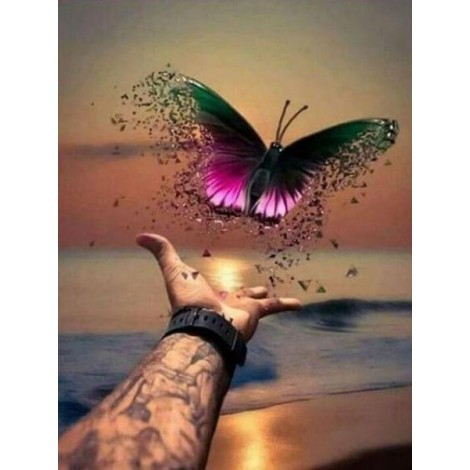 Beautiful Butterfly Freed to Fly