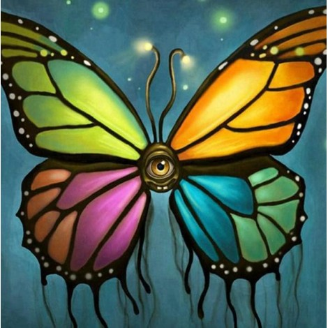 Bright Colored Watching Butterfly
