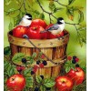 Apples in a Bucket & Sparrows Diamond Painting
